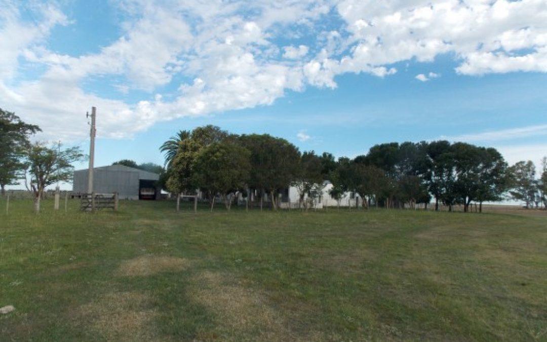 Campo En Venta En Gualeguaychu. 130 Ha. «Agricultura»