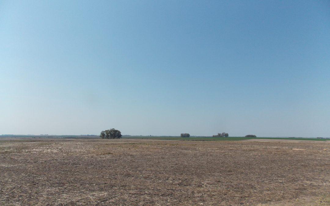 Campo 1.500Ha. «agricultura»