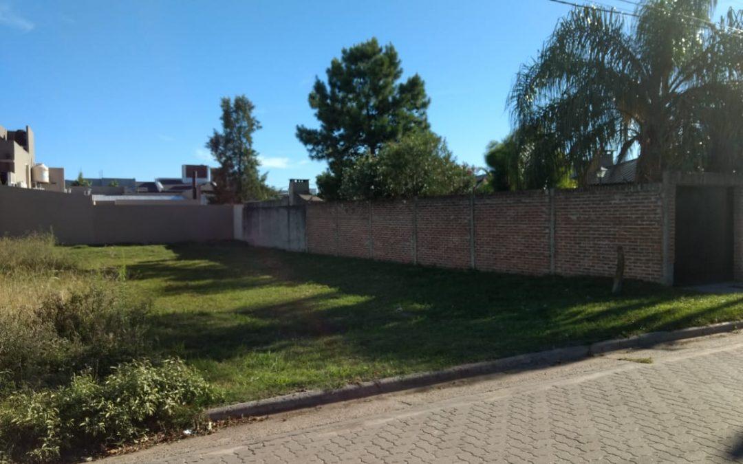 Terreno calle Cervantes al 1.100